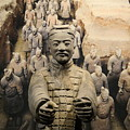 Terracotta Warrior Army Of Qin Shi Huang Di Iv by Richard Reeve