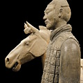 Terracotta Warrior Army Of Qin Shi Huang Di V by Richard Reeve