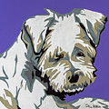 Terrier Mix by Slade Roberts