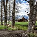 Moulton Barn On Mormon Row by Scott Read