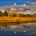 Teton Fall Foliage And Fog by Adam Jewell