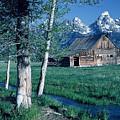 Teton Homestead  by Dennis Hammer