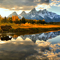 Teton Moose Sunset Stroll by Adam Jewell