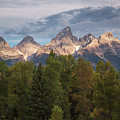 Teton Morning by Sharon Seaward