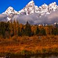 Teton Peaks Above Fall Foliage by Adam Jewell