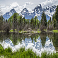 Teton Reflection by Tony Hood