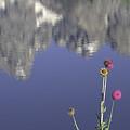 Teton Reflections by Elizabeth Eldridge