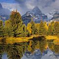 Tetons And Schwabacher Pond by Doug Davidson