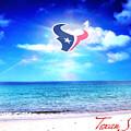 Texan Shine by CMO Prints