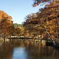 Texas Autumn by Bob Phillips