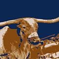 Texas Bevo Color 6 by Scott Kelley