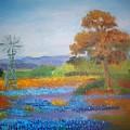 Texas Bluebonnets by Sandra McClure