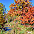 Texas Hill Country Autumn by Savannah Gibbs
