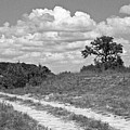 Texas Hill Country Trail by Jim Smith