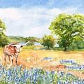 Texas Longhorn And Bluebonnets by Carlin Blahnik CarlinArtWatercolor