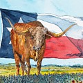 Texas  by Don Hand