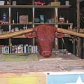 Texas Monster Longhorn by Michael Pasko
