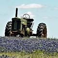 Texas Spring by Austin Robinson