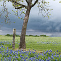 Texas Spring Storm by Rospotte Photography