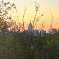 Texas State Capital From Far East Austin by Rose Cooper