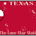 Texas State License Plate With Damage by Bigalbaloo Stock