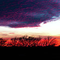 Texas Sunset by Lisa Bell