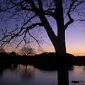 Texas Sunset On The Lake by Kathy Yates
