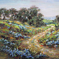Texas Trail  by Brenda Brannon