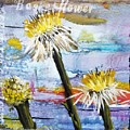 Texas Wildflowers Tp A E by Michael Dillon