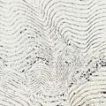 Texture 811 by Modern Art