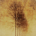 Textured Eerie Trees by Dan Sproul