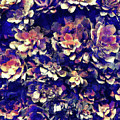 Textured Garden Succulents by Phil Perkins