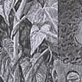 Textures by Quwatha Valentine