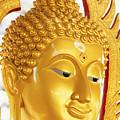 Thailand, Pathom Thani by Bill Brennan - Printscapes