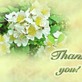 Thank You Card - Multiflora Roses by Mother Nature