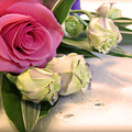 Thank You Rose Bouquet  by Eena Bo