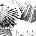 Thank You Seashell by Rachel Hannah