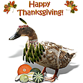 Thanksgiving Indian Duck by Gravityx9 Designs