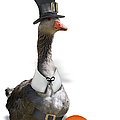 Thanksgiving Pilgrim Goose by Gravityx9  Designs