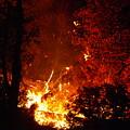That Ain't No Campfire by DeeLon Merritt