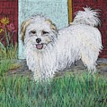 That Little White Dog by Reb Frost