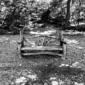 That Weird Bench One by Robbie Masso