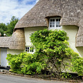 Thatched Cottages Of Hampshire 19 by Shirley Mitchell