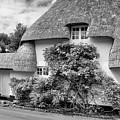 Thatched Cottages Of Hampshire 20 by Shirley Mitchell
