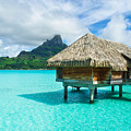 Thatched Roof Honeymoon Bungalow On Bora Bora by IPics Photography