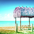 Thatched Roof Hut On Beach by Art Spectrum