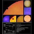 The 2012 Transit Of Venus by Robert Davies