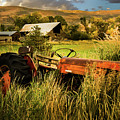 The Abandoned Tractor - 2 by TL Mair