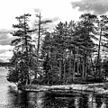 The Adirondack by George Fredericks