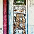 The Aged Door by Frances Ann Hattier